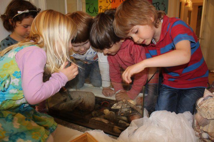 """Ein Leben zwischen Wasser und Land – die Vorschule holte sich das Wunder Natur ins """"Klassenzimmer"""""""